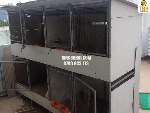 địa chỉ mua sắt v lỗ làm chuồng gà
